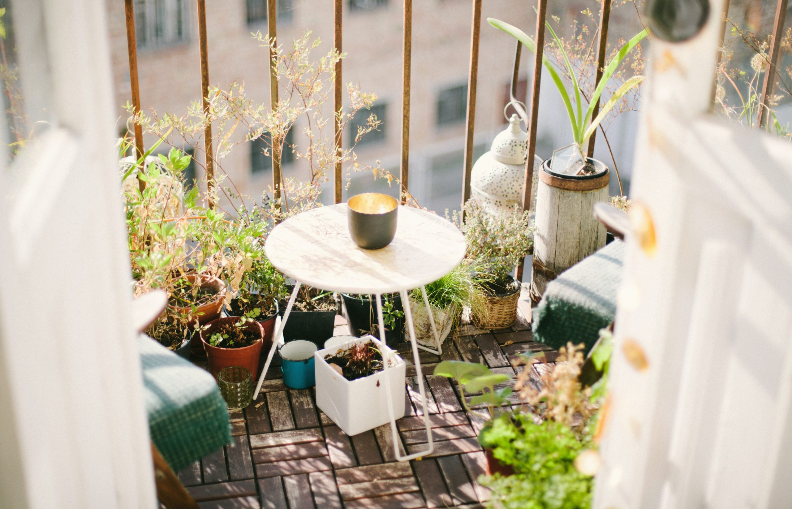 Well-decorated terrace in the city