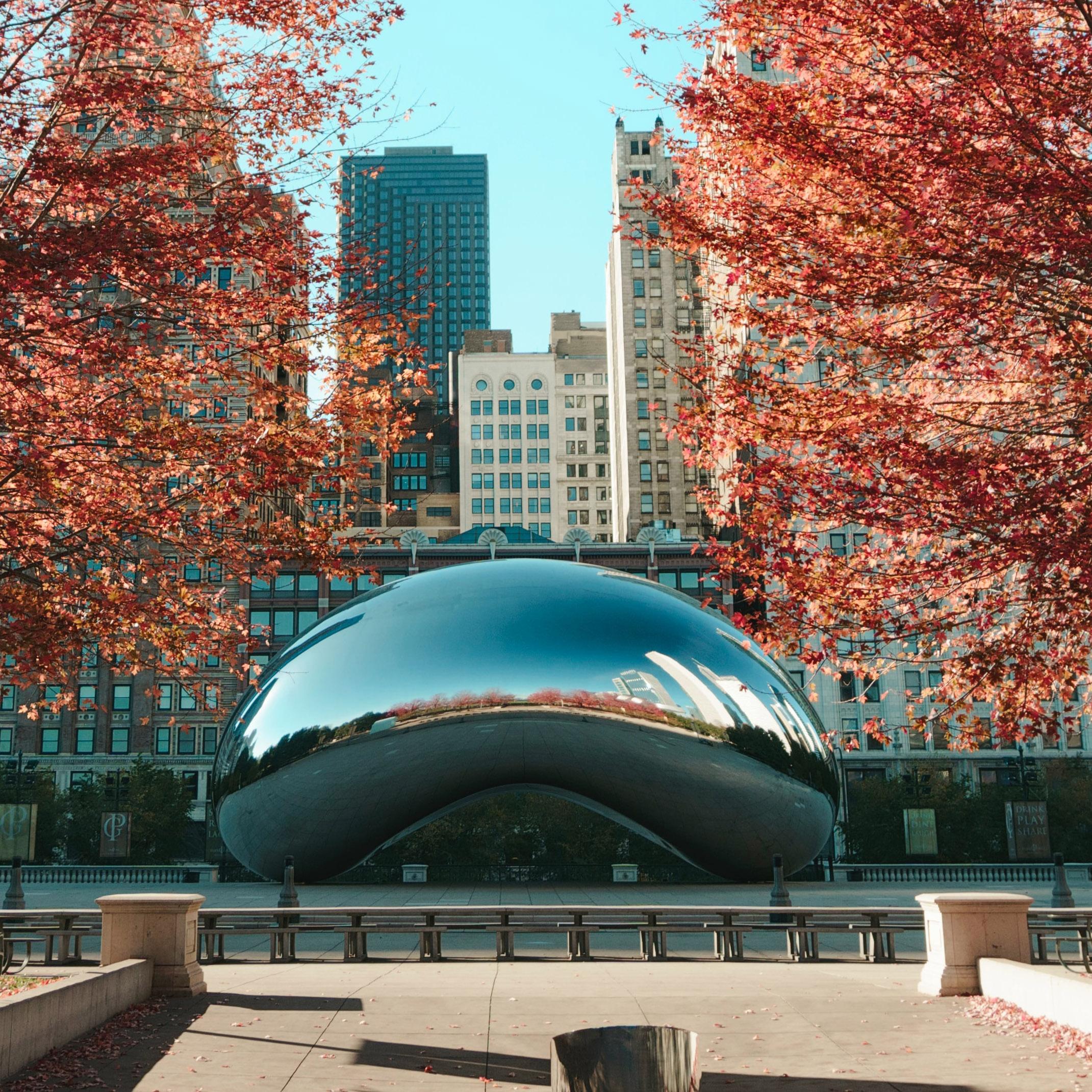 Photo of the Chicago Loop neighborhood in autumn